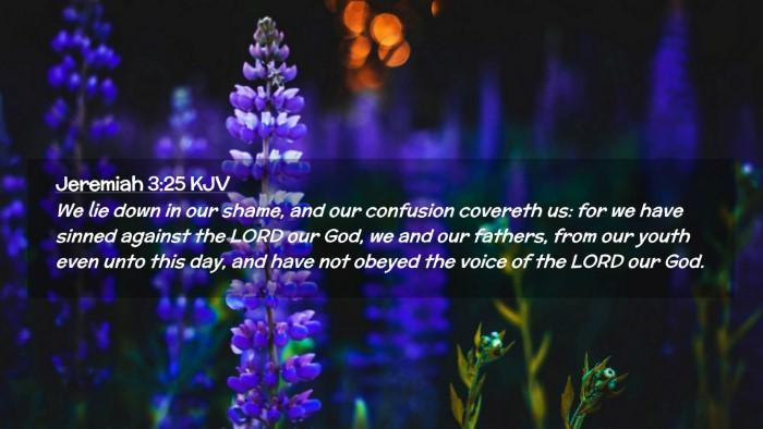 Picture 02 - Jeremiah 3:25 KJV Desktop Wallpaper - We lie down in our shame, and our confusion - Desktop Bible Verse Wallpaper