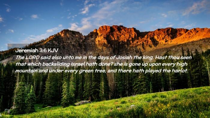 Picture 02 - Jeremiah 3:6 KJV Desktop Wallpaper - The LORD said also unto me in the days of Josiah - Desktop Bible Verse Wallpaper