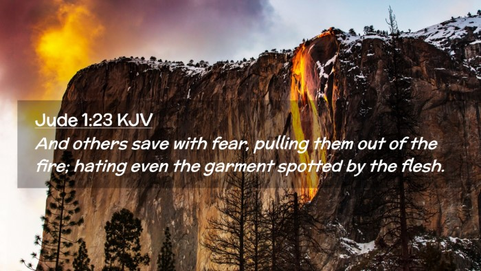 Picture 02 - Jude 1:23 KJV Desktop Wallpaper - And others save with fear, pulling them out of - Desktop Bible Verse Wallpaper