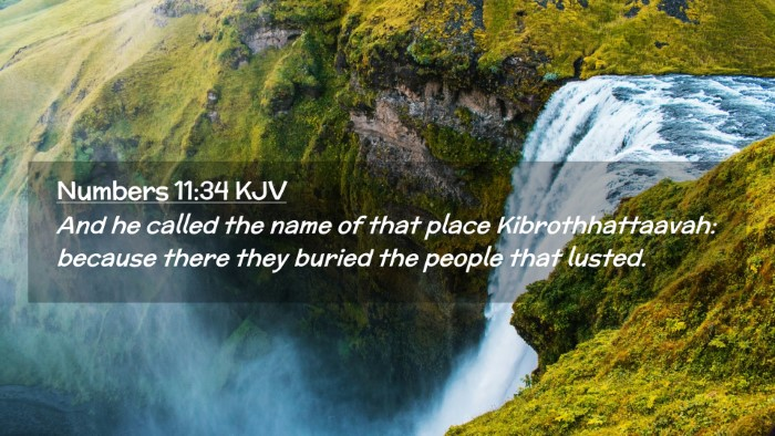 Picture 02 - Numbers 11:34 KJV Desktop Wallpaper - And he called the name of that place - Desktop Bible Verse Wallpaper