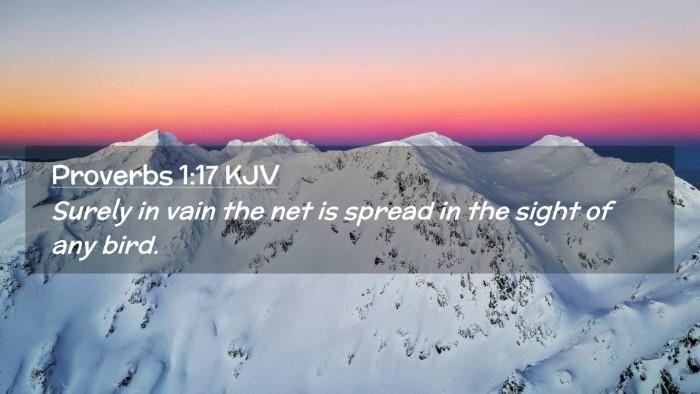 Picture 02 - Proverbs 1:17 KJV Desktop Wallpaper - Surely in vain the net is spread in the sight of - Desktop Bible Verse Wallpaper