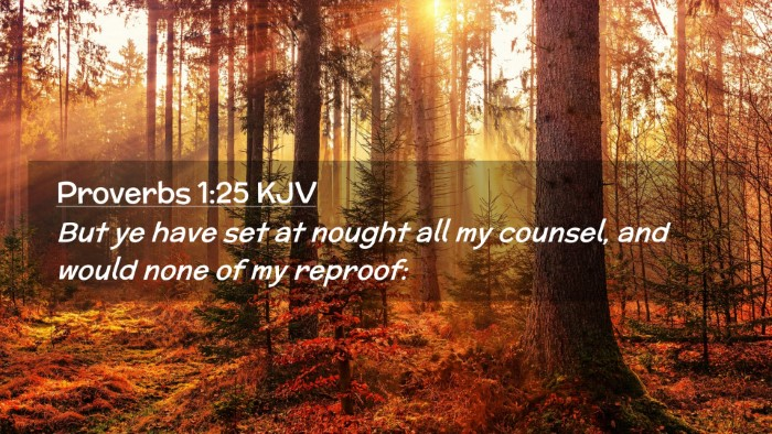 Picture 02 - Proverbs 1:25 KJV Desktop Wallpaper - But ye have set at nought all my counsel, and - Desktop Bible Verse Wallpaper