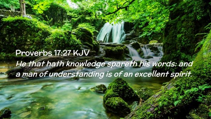Picture 02 - Proverbs 17:27 KJV Desktop Wallpaper - He that hath knowledge spareth his words: and a - Desktop Bible Verse Wallpaper