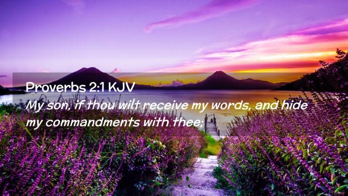 Picture 02 - Proverbs 2:1 KJV Desktop Wallpaper - My son, if thou wilt receive my words, and hide - Desktop Bible Verse Wallpaper
