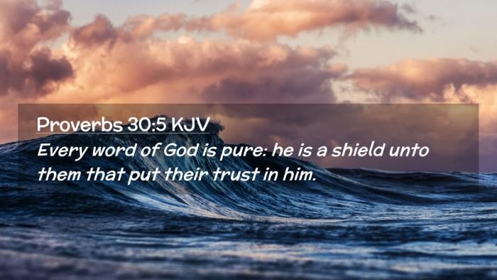 Picture 02 - Proverbs 30:5 KJV Desktop Wallpaper - Every word of God is pure: he is a shield unto - Desktop Bible Verse Wallpaper