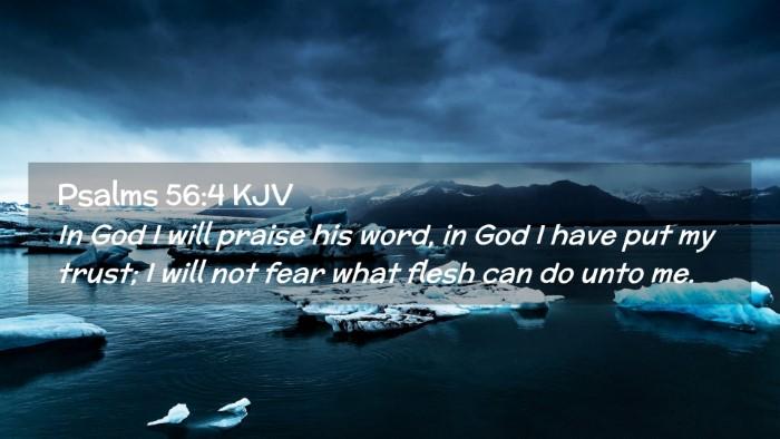 Picture 02 - Psalms 56:4 KJV Desktop Wallpaper - In God I will praise his word, in God I have put - Desktop Bible Verse Wallpaper