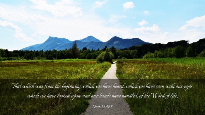 Picture 03 - 1 John 1:1 KJV Desktop Wallpaper - That which was from the beginning, which we have - Desktop Bible Verse Wallpaper
