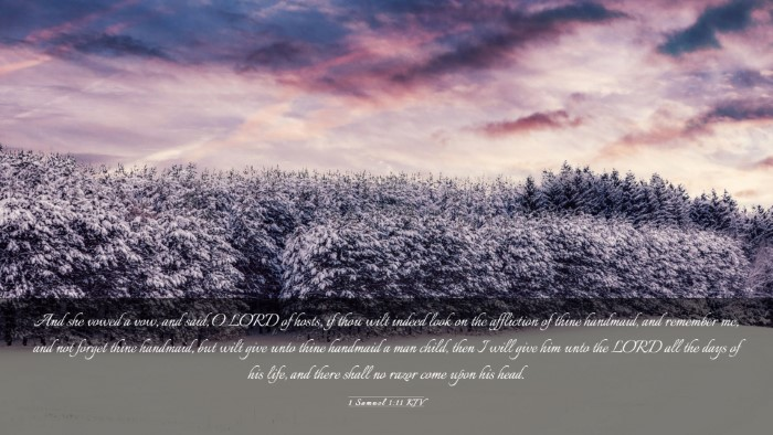 Picture 03 - 1 Samuel 1:11 KJV Desktop Wallpaper - And she vowed a vow, and said, O LORD of hosts, - Desktop Bible Verse Wallpaper