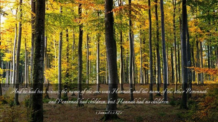 Picture 03 - 1 Samuel 1:2 KJV Desktop Wallpaper - And he had two wives; the name of the one was - Desktop Bible Verse Wallpaper