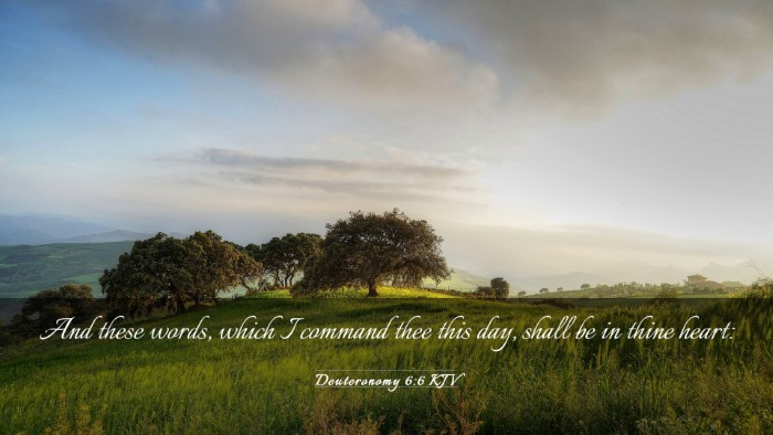 Picture 03 - Deuteronomy 6:6 KJV Desktop Wallpaper - And these words, which I command thee this day, - Desktop Bible Verse Wallpaper