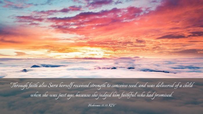 Picture 03 - Hebrews 11:11 KJV Desktop Wallpaper - Through faith also Sara herself received strength - Desktop Bible Verse Wallpaper