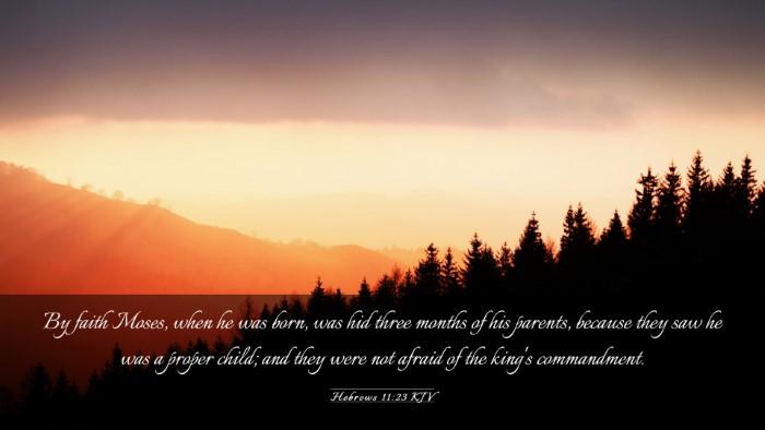 Picture 03 - Hebrews 11:23 KJV Desktop Wallpaper - By faith Moses, when he was born, was hid three - Desktop Bible Verse Wallpaper
