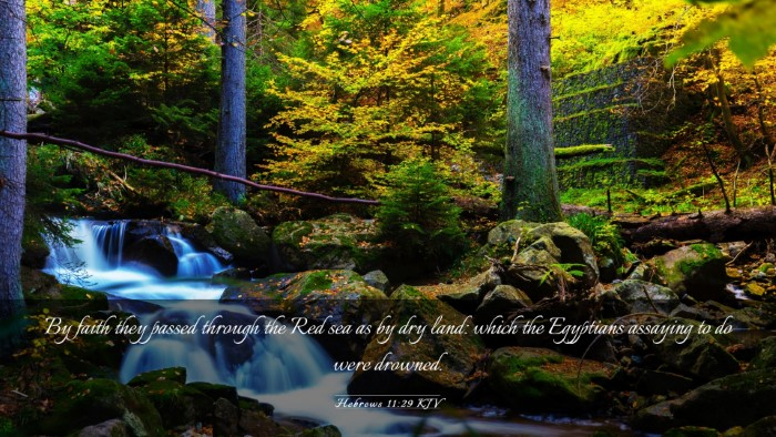 Picture 03 - Hebrews 11:29 KJV Desktop Wallpaper - By faith they passed through the Red sea as by - Desktop Bible Verse Wallpaper