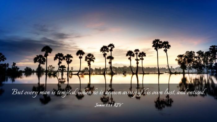 Picture 03 - James 1:14 KJV Desktop Wallpaper - But every man is tempted, when he is drawn away - Desktop Bible Verse Wallpaper