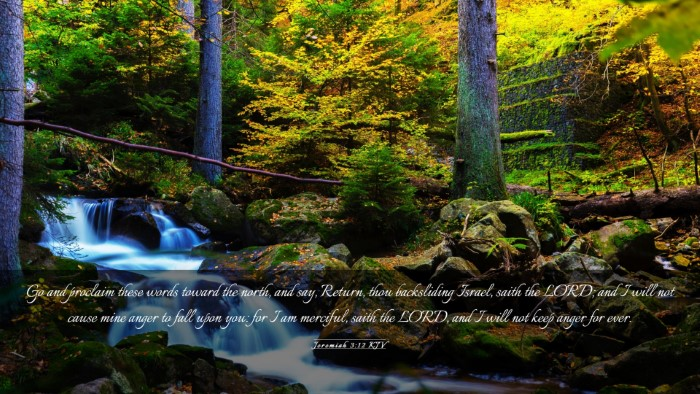 Picture 03 - Jeremiah 3:12 KJV Desktop Wallpaper - Go and proclaim these words toward the north, and - Desktop Bible Verse Wallpaper