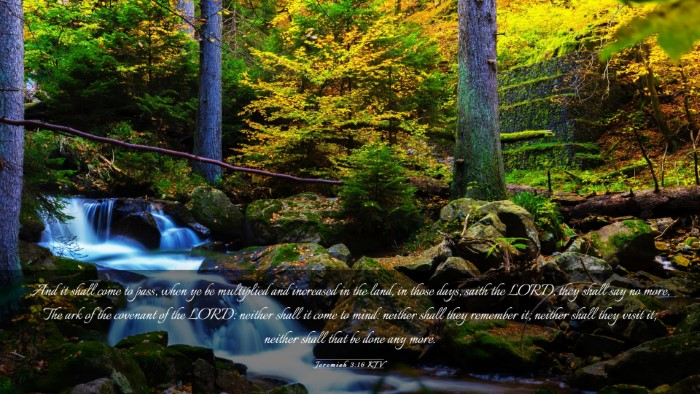 Picture 03 - Jeremiah 3:16 KJV Desktop Wallpaper - And it shall come to pass, when ye be multiplied - Desktop Bible Verse Wallpaper