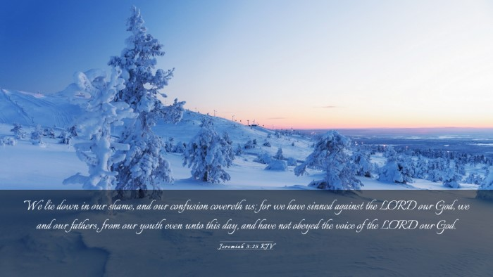 Picture 03 - Jeremiah 3:25 KJV Desktop Wallpaper - We lie down in our shame, and our confusion - Desktop Bible Verse Wallpaper