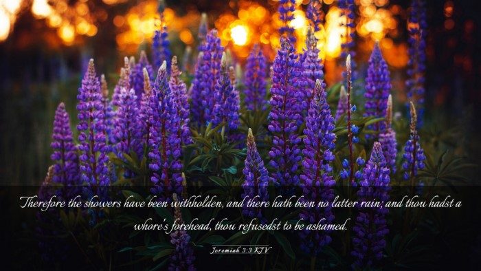 Picture 03 - Jeremiah 3:3 KJV Desktop Wallpaper - Therefore the showers have been withholden, and - Desktop Bible Verse Wallpaper
