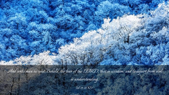 Picture 03 - Job 28:28 KJV Desktop Wallpaper - And unto man he said, Behold, the fear of the - Desktop Bible Verse Wallpaper