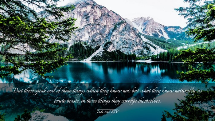 Picture 03 - Jude 1:10 KJV Desktop Wallpaper - But these speak evil of those things which they - Desktop Bible Verse Wallpaper