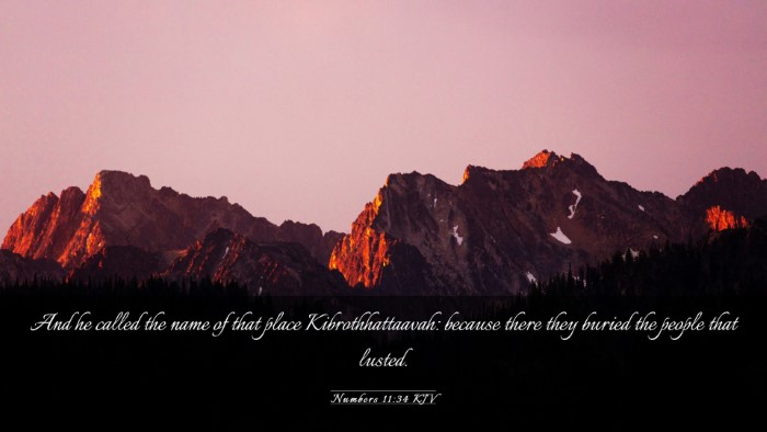 Picture 03 - Numbers 11:34 KJV Desktop Wallpaper - And he called the name of that place - Desktop Bible Verse Wallpaper
