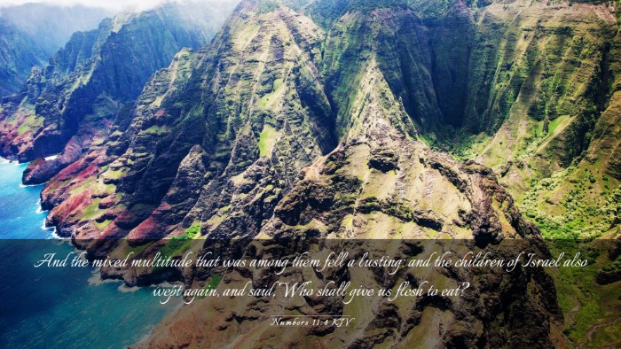 Picture 03 - Numbers 11:4 KJV Desktop Wallpaper - And the mixed multitude that was among them fell - Desktop Bible Verse Wallpaper