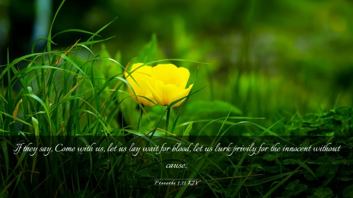 Picture 03 - Proverbs 1:11 KJV Desktop Wallpaper - If they say, Come with us, let us lay wait for - Desktop Bible Verse Wallpaper