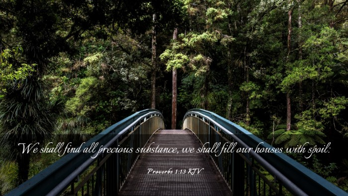 Picture 03 - Proverbs 1:13 KJV Desktop Wallpaper - We shall find all precious substance, we shall - Desktop Bible Verse Wallpaper