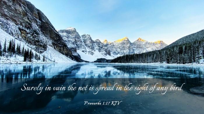 Picture 03 - Proverbs 1:17 KJV Desktop Wallpaper - Surely in vain the net is spread in the sight of - Desktop Bible Verse Wallpaper