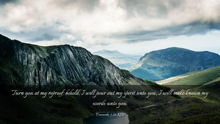 Picture 03 - Proverbs 1:23 KJV Desktop Wallpaper - Turn you at my reproof: behold, I will pour out - Desktop Bible Verse Wallpaper