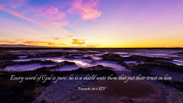 Picture 03 - Proverbs 30:5 KJV Desktop Wallpaper - Every word of God is pure: he is a shield unto - Desktop Bible Verse Wallpaper