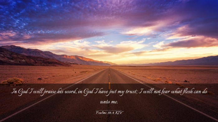 Picture 03 - Psalms 56:4 KJV Desktop Wallpaper - In God I will praise his word, in God I have put - Desktop Bible Verse Wallpaper
