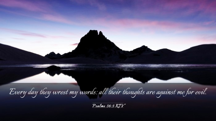 Picture 03 - Psalms 56:5 KJV Desktop Wallpaper - Every day they wrest my words: all their thoughts - Desktop Bible Verse Wallpaper