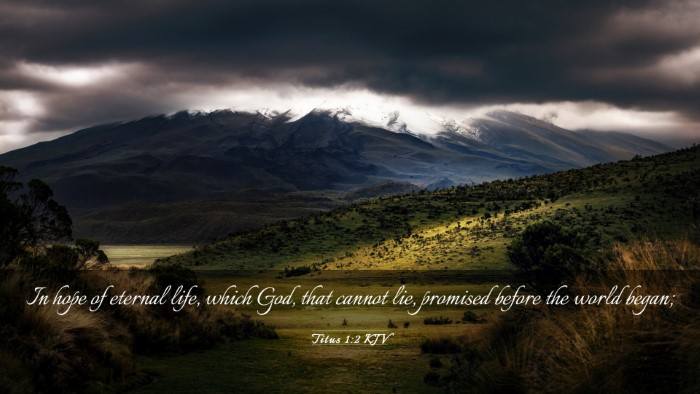 Picture 03 - Titus 1:2 KJV Desktop Wallpaper - In hope of eternal life, which God, that cannot - Desktop Bible Verse Wallpaper