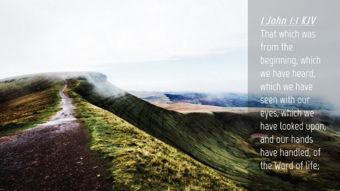 Picture 04 - 1 John 1:1 KJV Desktop Wallpaper - That which was from the beginning, which we have - Desktop Bible Verse Wallpaper