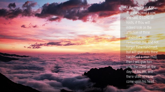 Picture 04 - 1 Samuel 1:11 KJV Desktop Wallpaper - And she vowed a vow, and said, O LORD of hosts, - Desktop Bible Verse Wallpaper