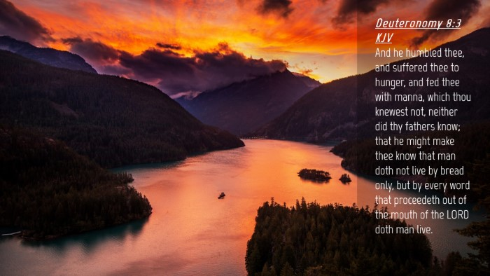 Picture 04 - Deuteronomy 8:3 KJV Desktop Wallpaper - And he humbled thee, and suffered thee to hunger, - Desktop Bible Verse Wallpaper