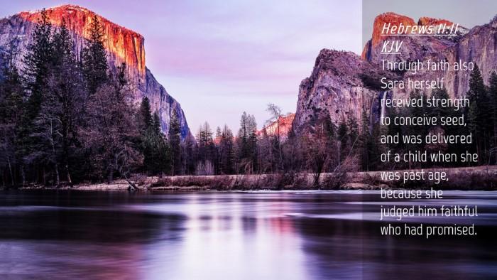 Picture 04 - Hebrews 11:11 KJV Desktop Wallpaper - Through faith also Sara herself received strength - Desktop Bible Verse Wallpaper