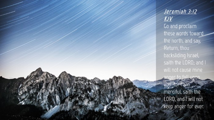 Picture 04 - Jeremiah 3:12 KJV Desktop Wallpaper - Go and proclaim these words toward the north, and - Desktop Bible Verse Wallpaper
