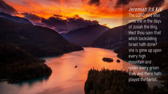 Picture 04 - Jeremiah 3:6 KJV Desktop Wallpaper - The LORD said also unto me in the days of Josiah - Desktop Bible Verse Wallpaper