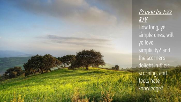 Picture 04 - Proverbs 1:22 KJV Desktop Wallpaper - How long, ye simple ones, will ye love - Desktop Bible Verse Wallpaper