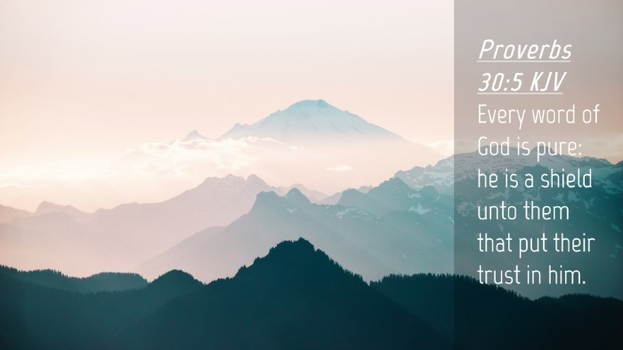 Picture 04 - Proverbs 30:5 KJV Desktop Wallpaper - Every word of God is pure: he is a shield unto - Desktop Bible Verse Wallpaper