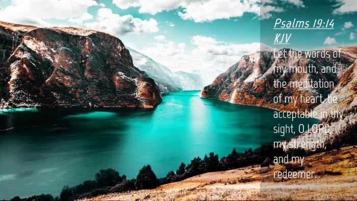 Picture 04 - Psalms 19:14 KJV Desktop Wallpaper - Let the words of my mouth, and the meditation of - Desktop Bible Verse Wallpaper