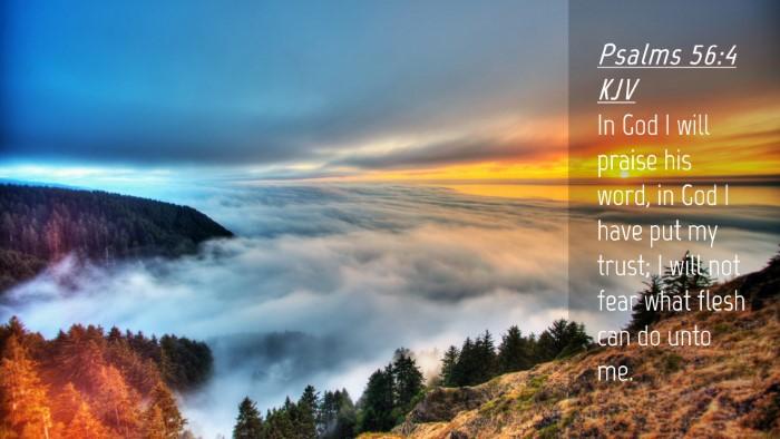 Picture 04 - Psalms 56:4 KJV Desktop Wallpaper - In God I will praise his word, in God I have put - Desktop Bible Verse Wallpaper