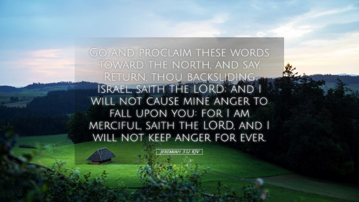 Picture 05 - Jeremiah 3:12 KJV Desktop Wallpaper - Go and proclaim these words toward the north, and - Desktop Bible Verse Wallpaper