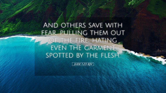 Picture 05 - Jude 1:23 KJV Desktop Wallpaper - And others save with fear, pulling them out of - Desktop Bible Verse Wallpaper