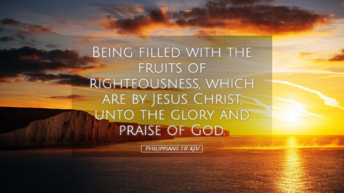 Picture 05 - Philippians 1:11 KJV Desktop Wallpaper - Being filled with the fruits of righteousness, - Desktop Bible Verse Wallpaper