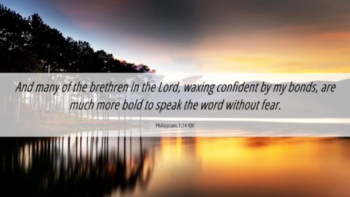 Picture 06 - Philippians 1:14 KJV Desktop Wallpaper - And many of the brethren in the Lord, waxing - Desktop Bible Verse Wallpaper