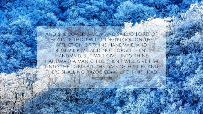 Picture 07 - 1 Samuel 1:11 KJV Desktop Wallpaper - And she vowed a vow, and said, O LORD of hosts, - Desktop Bible Verse Wallpaper