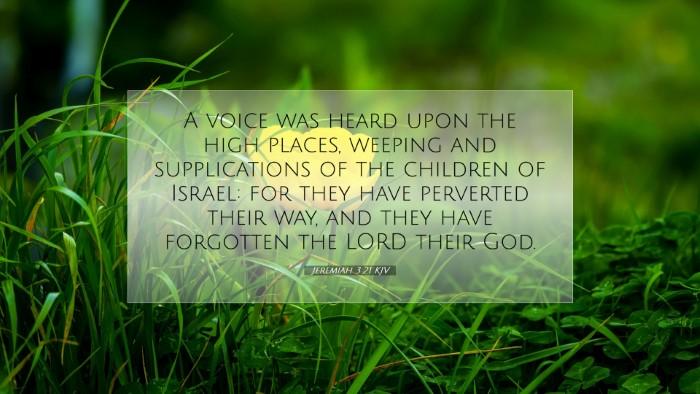 Picture 07 - Jeremiah 3:21 KJV Desktop Wallpaper - A voice was heard upon the high places, weeping - Desktop Bible Verse Wallpaper